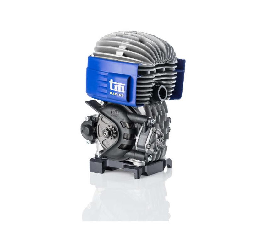 Motore Tm Mini2 60cc