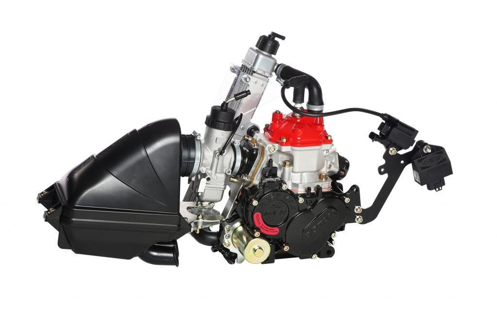 Rotax Evo engines